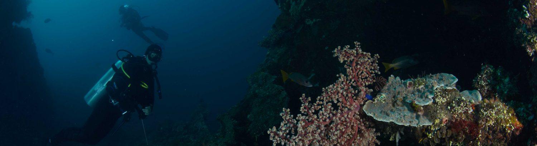 bawah laut tulamben